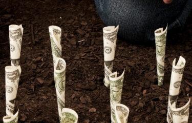 השקעה בקופת גמל